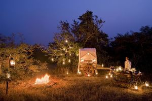 This Secret Luxury Wildlife Lodge Set In A Forest Is Ideal For Couples Seeking Comfort And Serenity