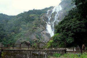 My Trek to Dudhsagar Falls: A Wish Finally Fulfilled