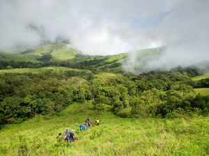 The Green Carpet that I Treaded on: My Trek to Kudremukha & Bavikonda Peaks