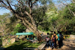 Kumbakarai-Kodaikanal Trail 1/1 by Tripoto