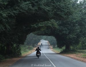 Our Bike Ride to Somanathapura & Talakadu