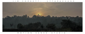 Jim Corbett National Park 1/undefined by Tripoto