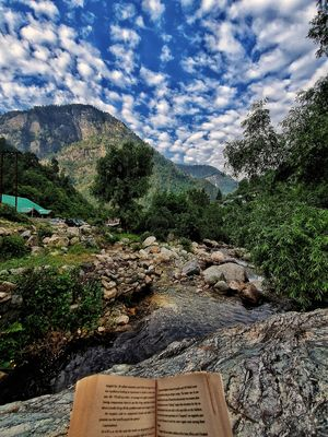 Fall in love with Tirthan Valley in this gorgeous cottage #tirthanphotos