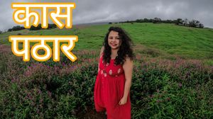 Kaas Plateau Satara:Exploreing The Valley Of Flowers#MyWanderlustStory