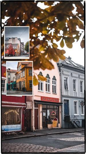 Bergen in one day