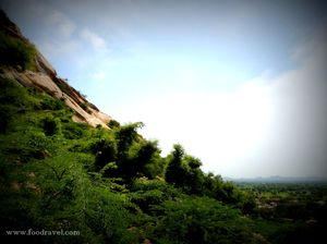 Dhosi Hills 1/undefined by Tripoto
