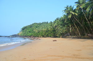 Go the distance and cover these exotic beaches in Goa on your next visit