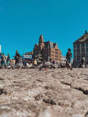 Perspectives of Amsterdam