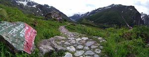 All alone in Valley of Flowers