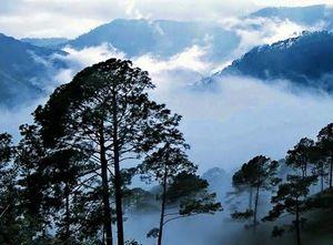 लम्बासिंगी: आंध्र प्रदेश का कश्मीर, दक्षिण भारत की एकमात्र जगह जहाँ बर्फ पड़ती है!