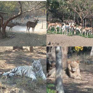 Pradhyuman Park 1/3 by Tripoto