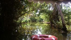 Poovar : Kerala's hidden Paradise