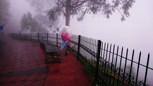 "Kodaikanal ""Princess of Hill stations"""