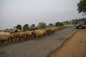 Mekedatu, Mahalli, Karnataka, India