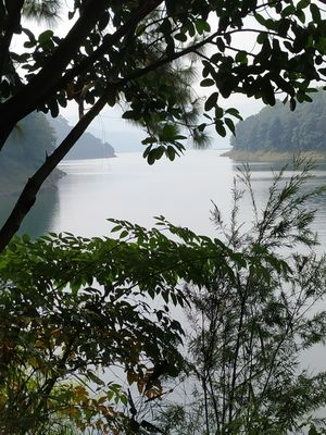 SHILLONG - Indeed the Scotland of East