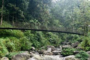 A visit to 'Orange Stream' (Suntalekhola) and Rishyap