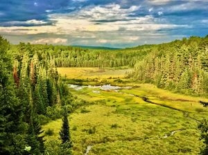 Explore this trail on your next visit to Algonquin Park, Ontario