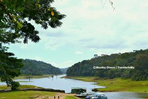 Thekkady, for the spice & wild