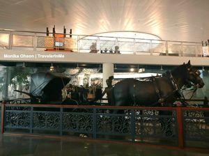 A pictorial walk through Rashtrapati Bhawan Museum