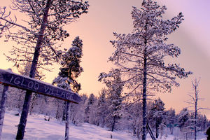 Want to experience Ten Bucket list things in one trip, head to Lapland !