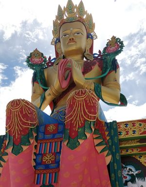 From Nubra valley, Diskit monastery is located at an altitude of 3142 meters ???? @tripotocommunity