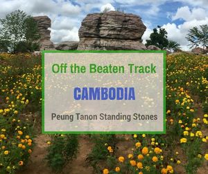 Peung Tanon Standing Stones | Off the Beaten Track Cambodia | Can Travel Will Travel