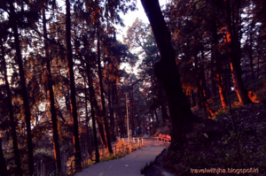Jakhoo Road 1/1 by Tripoto