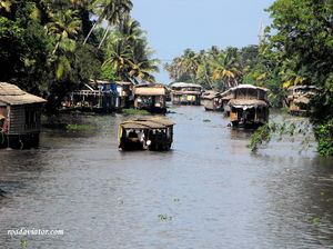 My Ultimate Guide To Kerala: Tips, Budget And Itineraries