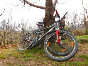 A day well spent Mountain Biking in Manali (with videos) for just 500 rupees