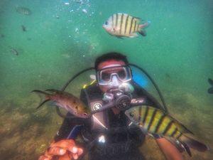 A short trip to the Scuba Diving hub of Maharashtra !!!