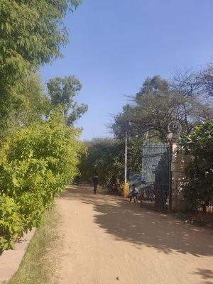 Travelling guide to Bio-Diversity Park of Jaipur #notontripoto