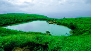Journey to the Green Paradise of Kerala -Wayanad - EXPERIENCEDROADS