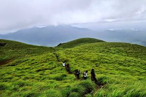 Chembra Peak Road 1/undefined by Tripoto