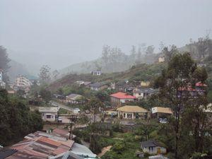 Munnar & Kochi - Rolling hills & Coastal Beauty