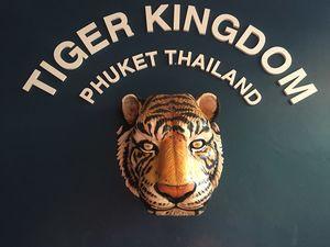 Tiger Kingdom Phuket ตำบล กะทู้ Пхукет Таиланд 1/undefined by Tripoto
