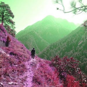 Parvati valley : A decade of wander and a paradise at loss