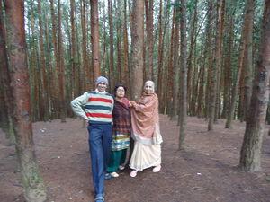 Kodaikanal Pine Forest 1/undefined by Tripoto