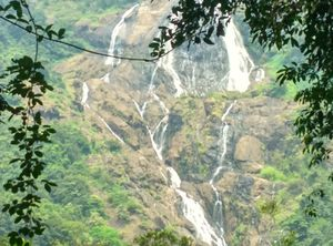 Dudhsagar Waterfalls : Stealing The Limelight