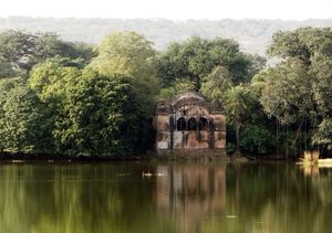 Tiger Trails: A Visit To Ranthambore National Park.