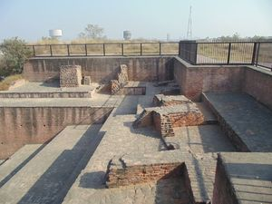 Trailing The Origins Of Indus Valley Civilization