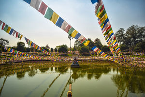 Eight Places in India where you can celebrate Losar