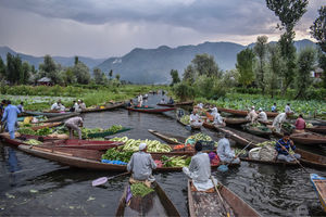 Floating Vegetable Market At The Dal