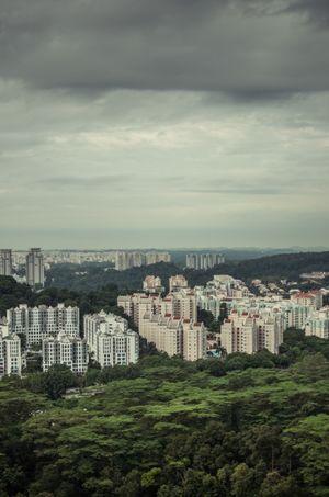 Bukit Timah Singapore 1/3 by Tripoto