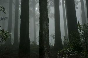 || Lepchajagat || ~~ Darjeeling, Westbengal, India