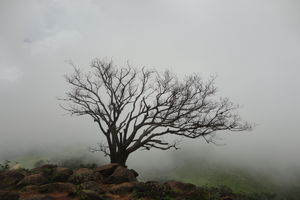 Mandalpatti