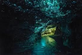 Experience caves with glowworms as living lights- your chance to view a million stars