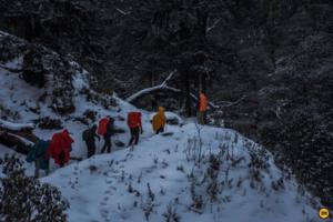 Why Brahmatal is the best winter trek ever