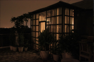 Tired of staying at home in Delhi? This AirBNB house in HKV is the perfect weekend getaway