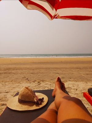 Goa you missed on your last trip!!