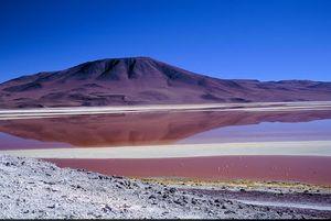 Laguna Colorada 1/1 by Tripoto